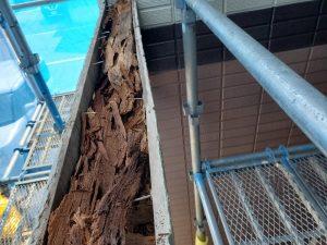 外壁の下地の木の腐食